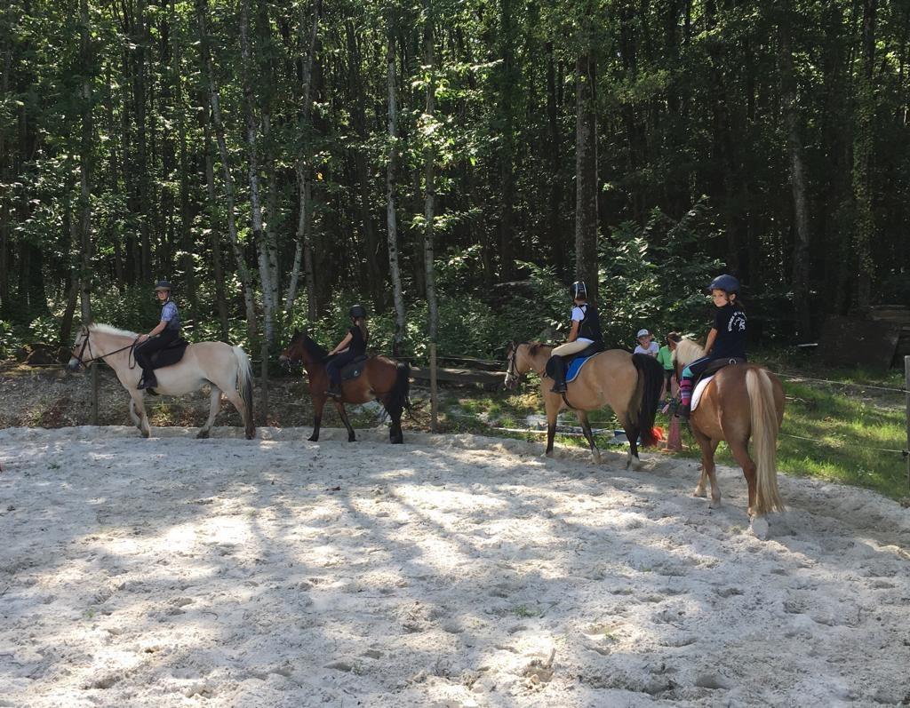 Carrière poneys + rond de longe en sable de Fontainebleau